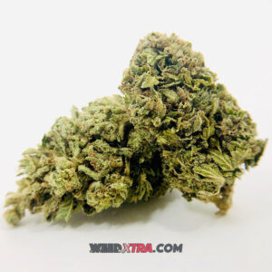 afgoo goo strain also known as Afghan goo strain, Afgooey is a indica dominant strain that provides uplifting creativity in smaller doses but generally reported to be relaxing and sleepy