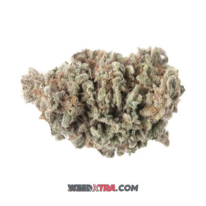 Berry White Marijuana Strain is a hybrid strain that is the offspring of parents of near-celebrity status in the cannabis world: Blueberry and White Widow. Berry is famous in its own right for its even, balanced effects that offer relaxation from stress and anxiety along with a sense of euphoria.