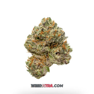 Bubba Kush Marijuana Strain is one of the well known indica strains that has gained fame in the US and beyond for its heavy sedative effects. Sweet hashish flavors with subtle notes of chocolate and coffee come through on the exhale, delighting the palate as powerful relaxation takes over