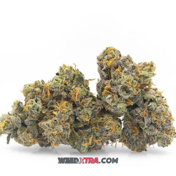 Hindu Kush Strain is a pureIndicastrain named after the mountain range stretching 500 miles between Pakistan and Afghanistan.