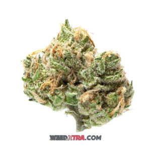 Island Sweet Skunk strain is a sativa made by crossing Sweet Pink Grapefruit & Skunk #1. It is enjoyed for its energetic & uplifting effects